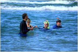 The value of a Guided Snorkelling Safari 4 SA Study University, FET and Bursary Information South Africa