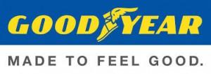 The Goodyear 'Spirit of Innovation' Scholarship 1 SA Study University, FET and Bursary Information South Africa