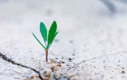 How to aid Student Growth in and Outside the Classroom